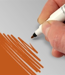 0000533_food-art-pen-orange_300